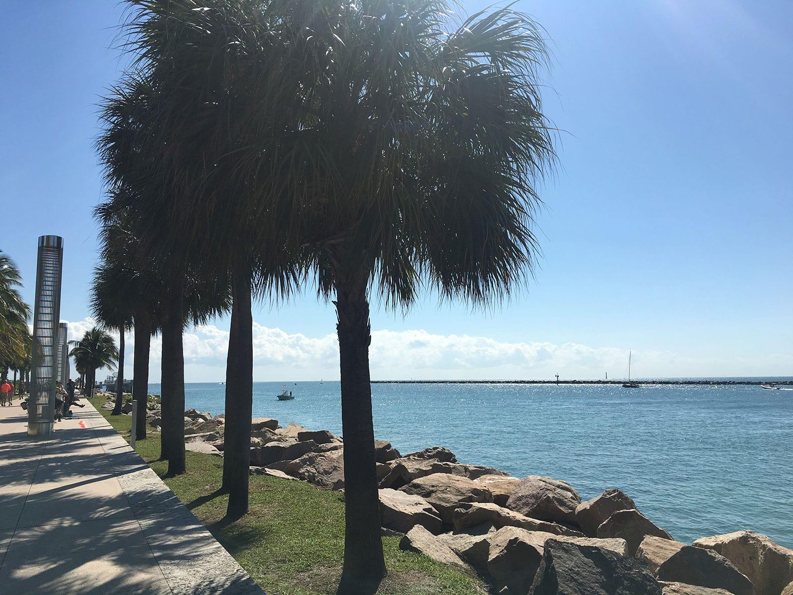 Wo Kann Man Mit Kindern In Miami Beach Gut Wohnen