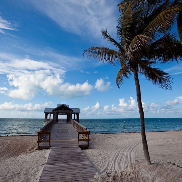 Beste Reisezeit & Wetter in Miami