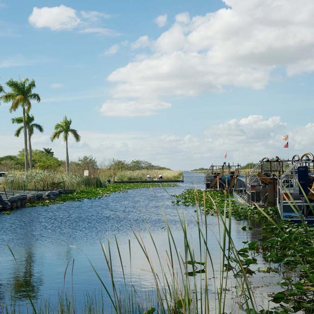 Everglades Tagesausflug von Miami aus